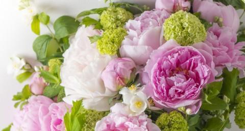 Encyclopédie Des Fleurs Composant Les Bouquets De Flower